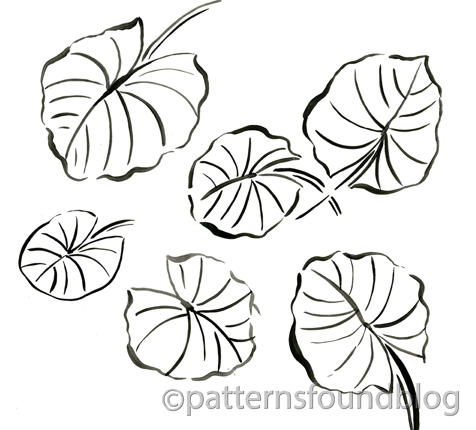 lilly pad coloring pages - photo#11